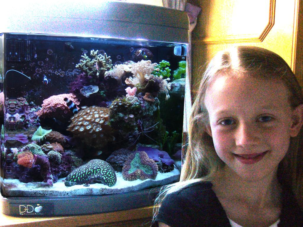 Alex won Ultimate Reef tank of the month with this aquarium in Feb 08