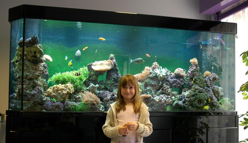 Early pictures of Alex's New Deltec Aquarium in Sheffield.