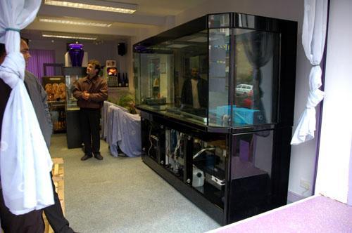 Aquarium in position