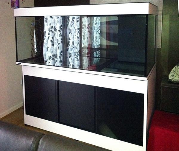The high quality steel framed Deltec aquarium moved into the house\