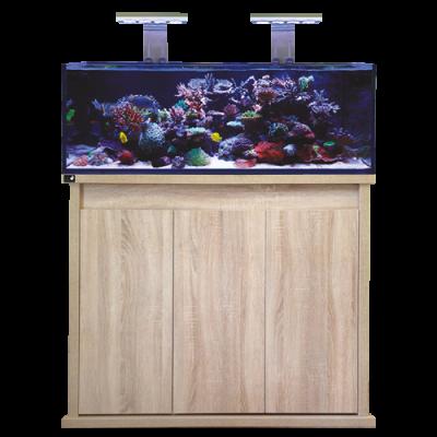 D-D Reef Pro 1200s Oak