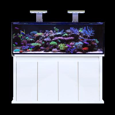 D-D Reef-Pro 1500s White