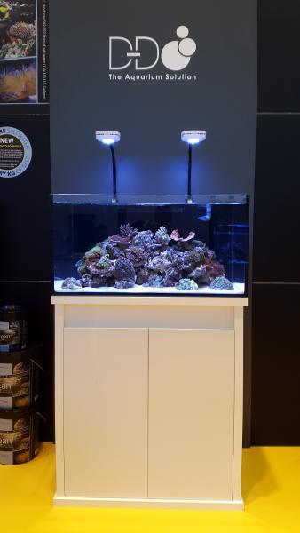 d d reef pro 900 d d the aquarium solution