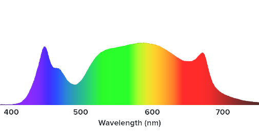 spectrum_primeFW%202.png