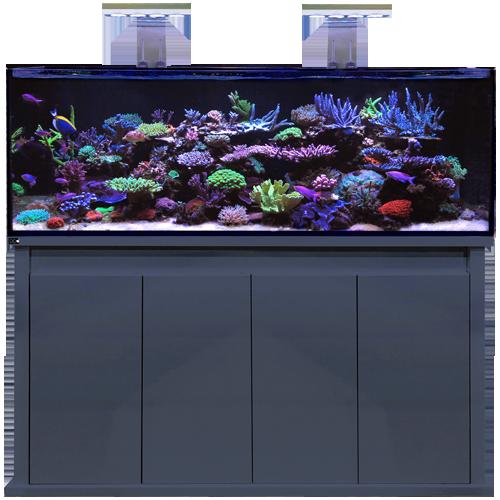 Reef Pro 1500 Anthracite