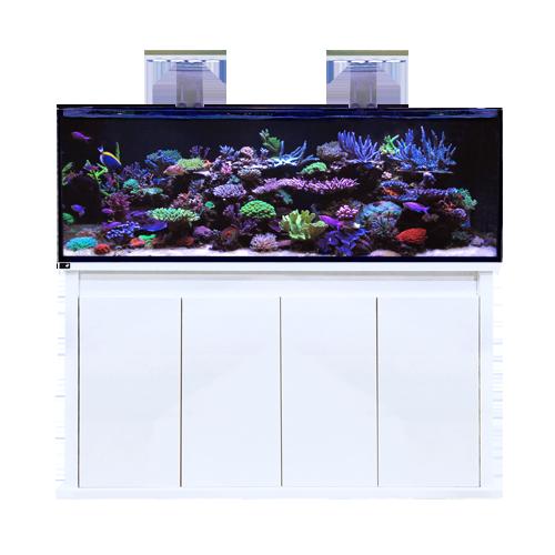 Reef Pro 1500S White